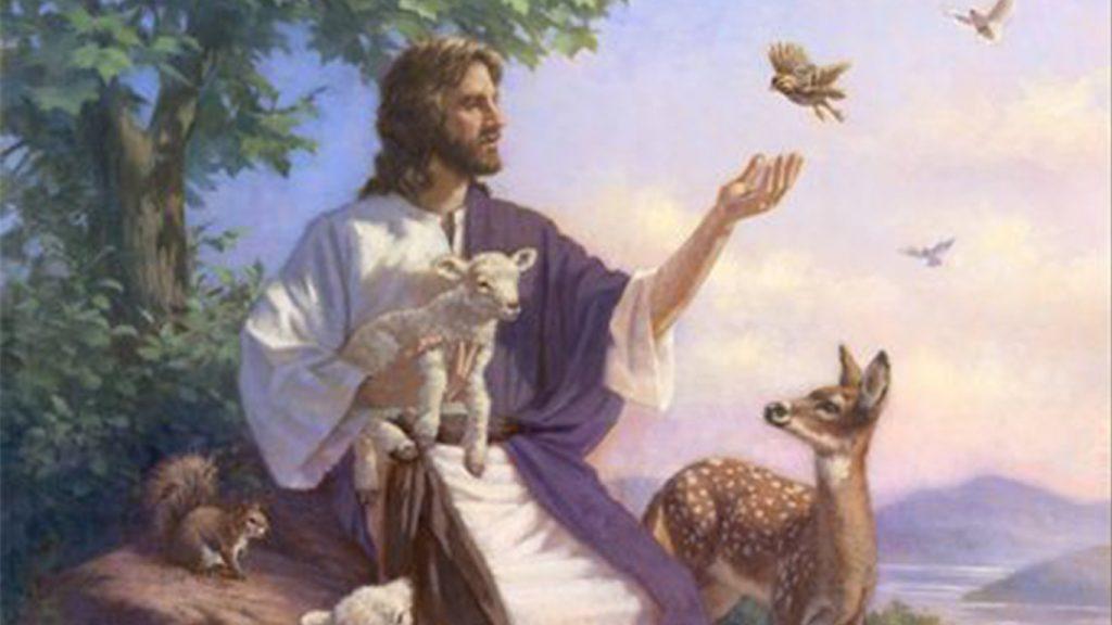 صحبت پیامبر با حیوانات